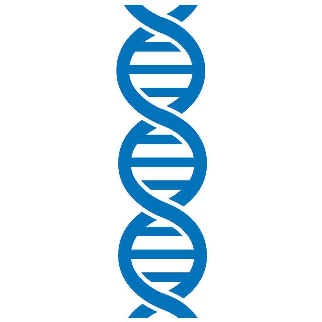 Basic Genetic Terms